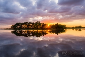 Beginners Landscape Photography Workshop in the New Forest (4 hours)
